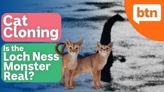 Cat Cloning & the Loch Ness Monster