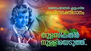 Thulasikkathir Nulliyeduthth_Krishna Song_with Lyrics