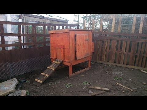 Build Your Own Chicken Coop For Next To Nothing