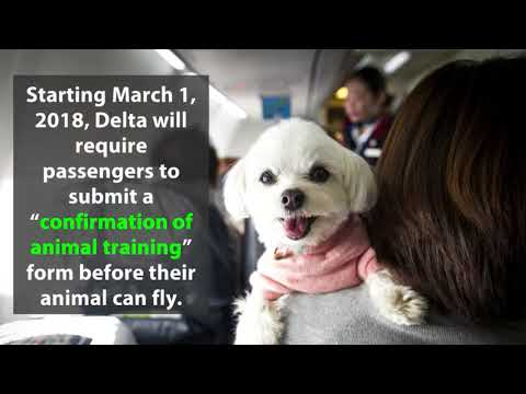 Delta Changes Rules For Emotional Support Animals