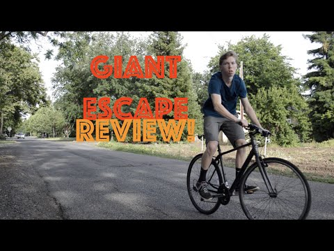 Giant Escape 3 Review! Best Sporty Commuter Bike!