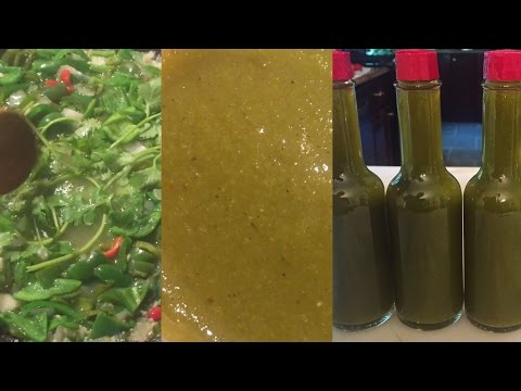 DIY How to make Homemade Jalapeno Hot Sauce from scratch using homegrown peppers Salsa Verde