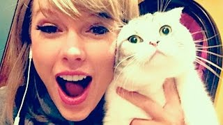 Taylor Swift's Cat Causes TWITTER MELTDOWN From Fans | What's Trending Now