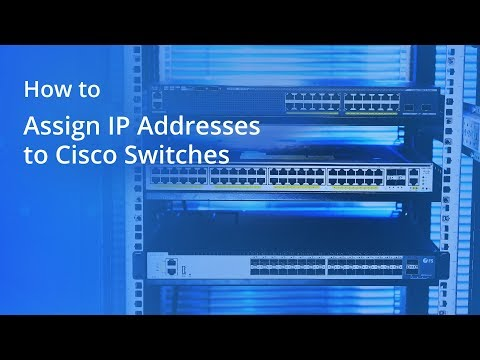 How to Assign IP Addresses to Cisco Switches | FS.COM