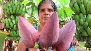 FARM FRESH BANANA FLOWER (fry and vada ) Cooking Two Varieties   VILLAGE FOOD
