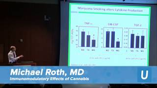 Immunomodulatory Effects of Cannabis - Michael Roth, MD   UCLA Health Cannabis Research Initiative