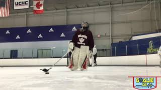 The Goalie Doctor - Spring Clinic - Dump In, Control, Pass, Drill - 3-6-19