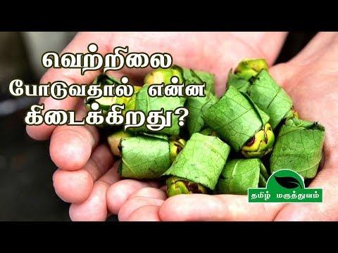 வெற்றிலை போடுவதால் என்ன கிடைக்கிறது? | Vetrilai Benefits in Tamil  | Betel Leaf Benefits