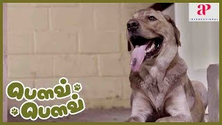 Bow Bow 2019 Tamil Movie Scene | Canine tries to find Master Ahaan | Latest Tamil Movies