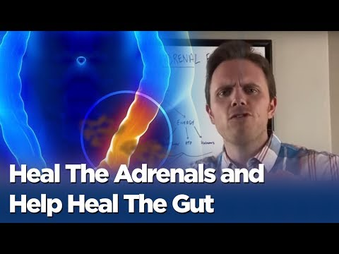 Leaky Gut and Adrenal Fatigue - Heal The Adrenals and Help Heal The Gut