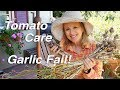 Garden Workday Vlog   Caring for Tomato Plants with Limited Sun, Garlic Fail