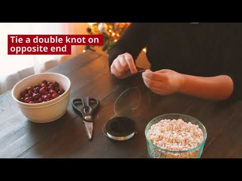 How to: Homemade Popped Sorghum and Cranberry Garland