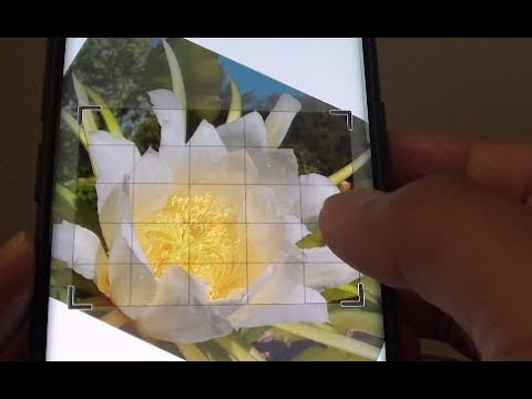 Samsung Galaxy S9: How to Rotate a Photo to a Desired Angle in Gallery