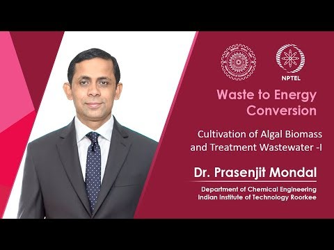 Cultivation of algal biomass and treatment of waste water-1