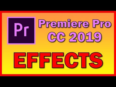 Premiere Pro CC 2019 tutorial: how to import a video and apply an Effect
