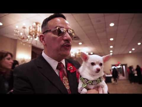 Dog Fashion: 2017 New York Pet Fashion Show