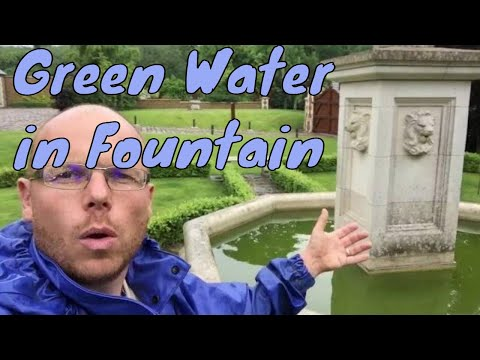 How to clear green water in a fountain | Any Pond Limited | UK