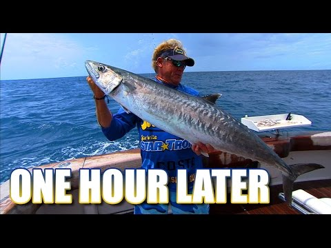 Kingfish Fishing for Snapper and Grouper in Key West Florida