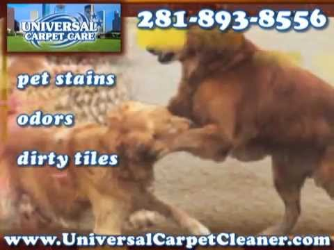 Carpet Cleaning Houston == For Service: 281-893-8556 == Rug Cleaners Houston