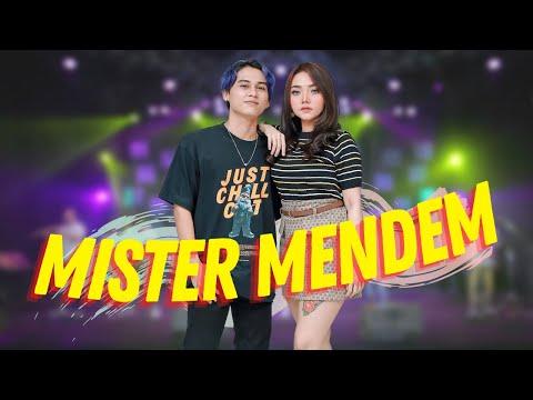 Download Lagu Syahiba Saufa Mister Mendem ft. James AP Mp3
