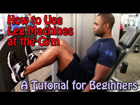 How to Use Leg Machines at the Gym (A Tutorial for Beginners)