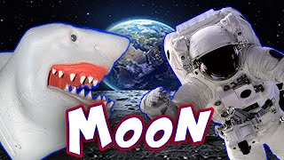 SHARK PUPPET GOES TO THE MOON!!!!!