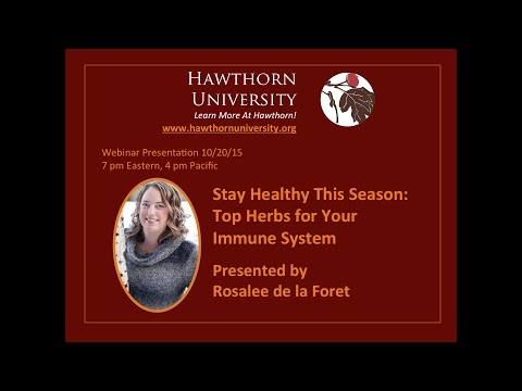Stay Healthy This Season: Top Herbs for Your Immune System with Rosalee de la Foret