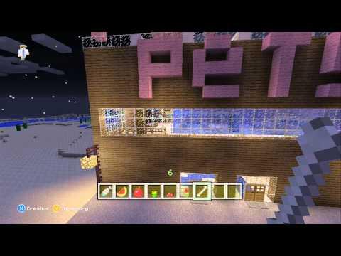 Minecraft Pet Store!