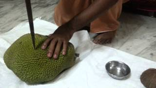 How To Cut And Eat Jackfruit Hd