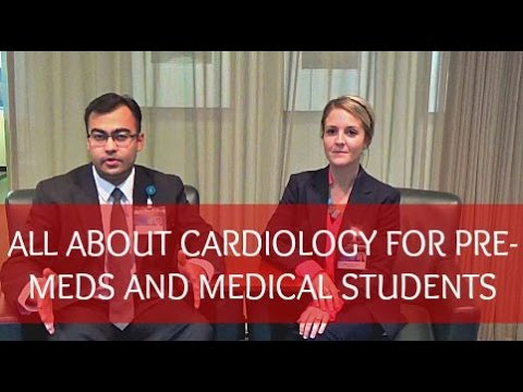 Everything You Need To Know About Cardiology