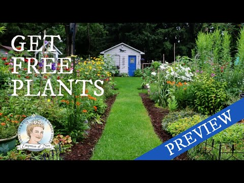 How to Get Free Plants From The Ones You Have