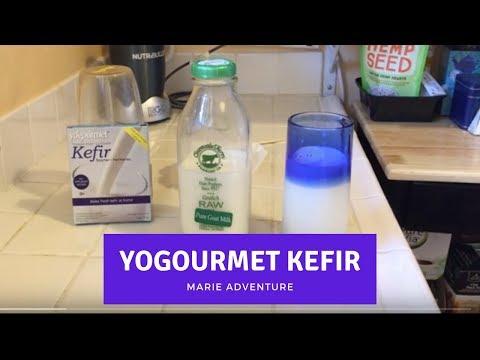 Make Fresh Kefir at home with Yogourmet Kefir Starter