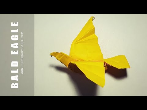 How to make a 3D Origami Bird - Bald Eagle