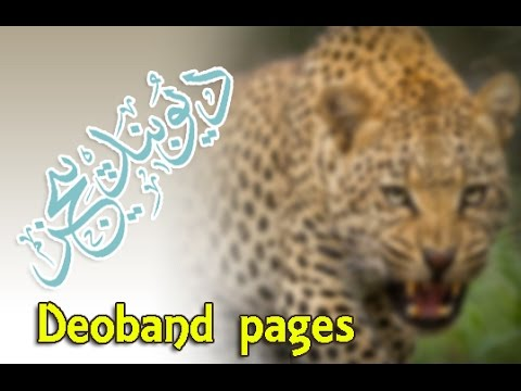 Deoband Pages