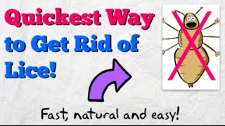 How To Get Rid Of Lice Fast Home Remedy To Kill Head Lice Naturally
