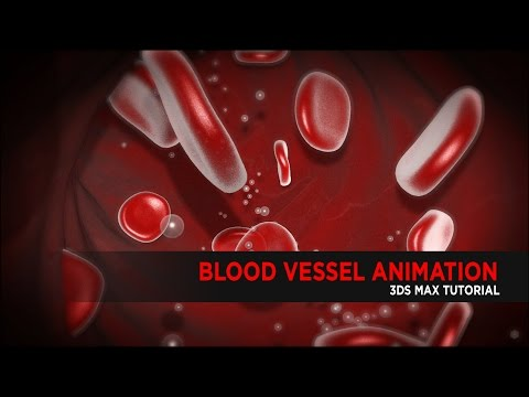 Blood Vessel Animation in 3DS Max : Tutorial
