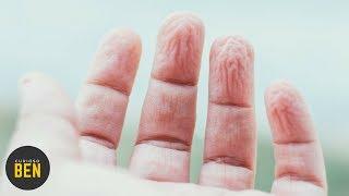 10 Cosas Curiosas Que Hace Tu Cuerpo Y Nadie Sabe Porqué