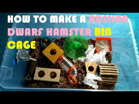 Budget Bin Cage For Russian Dwarf Hamsters - The Easy Way
