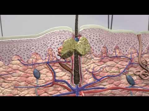 retin-a micro physician