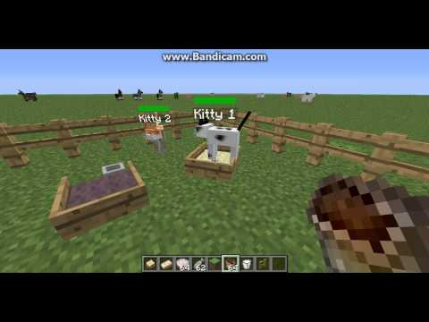 Minecraft How to breed mo creatures cats