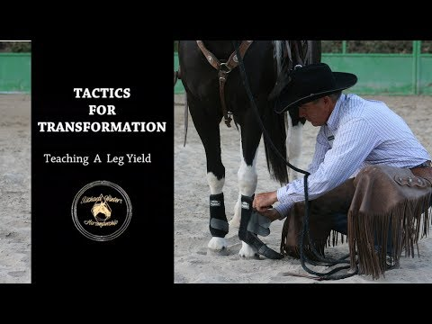 Teaching a Leg Yield with Richard Winters & Weaver Leather