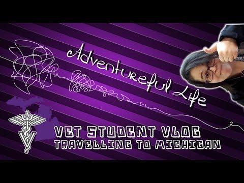 Vet Student Vlog 5   Adventureful Life