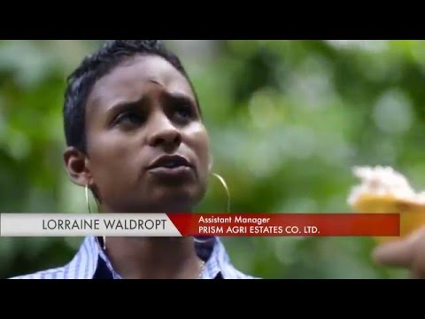 Invest in Trinidad and Tobago: Great Location, Great for Business (3min video) March 2016