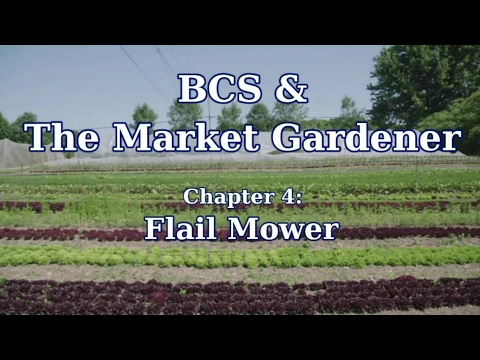 Download BCS Flail Mower in the Market Garden