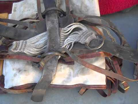 Aaron pack saddle equipment Oct 2014