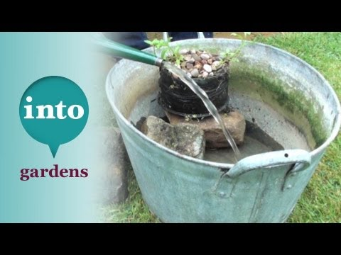 The Wildlife Gardener: making a container pond with Kate Bradbury