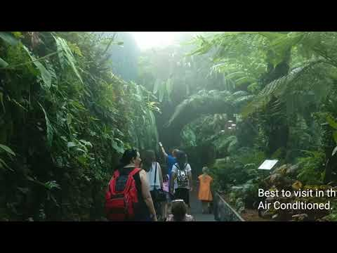 Singapore travel guide | Must visit places in Singapore For First time travellers