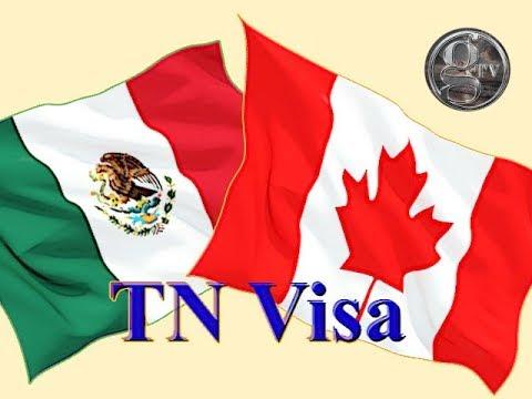 How to get TN visa - Cómo conseguir la Visa TN - GrayLaw TV