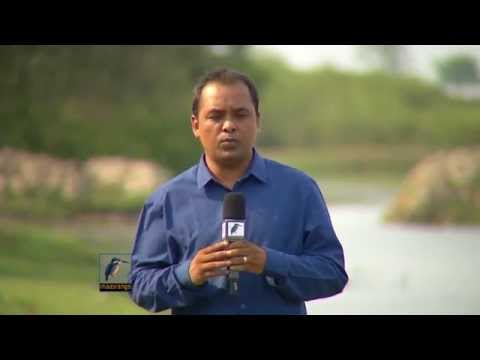 Bangladesh Climate Fund Corruption 02 | ACC, PIB Award Winning Report 2014