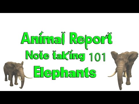 How to write an Animal Report - Note Taking - African Elephants Discovery